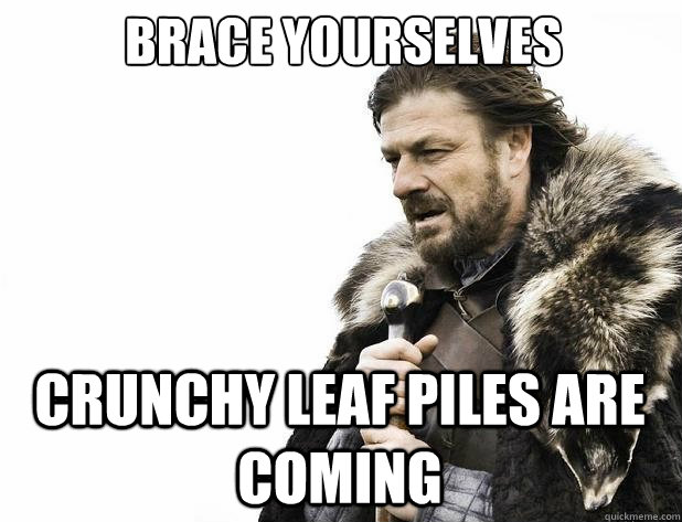 brace yourselves crunchy leaf piles are coming - Brace Yourself