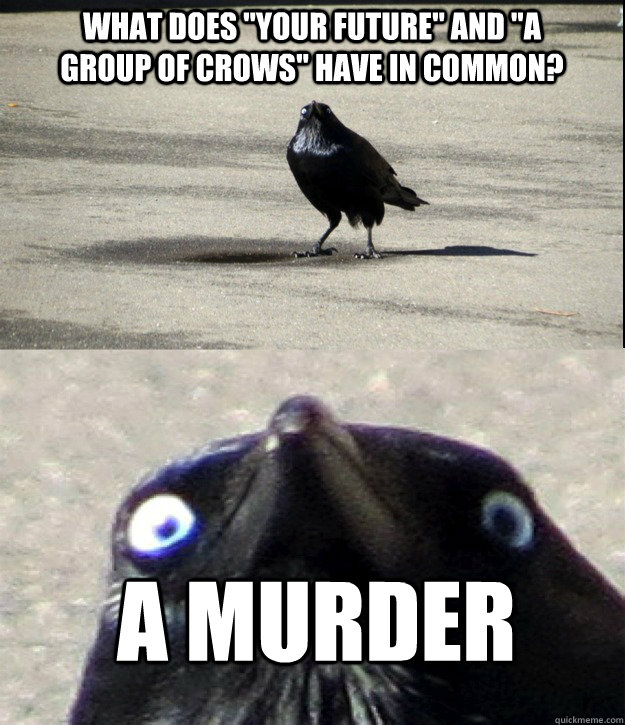what does your future and a group of crows have in commo - 