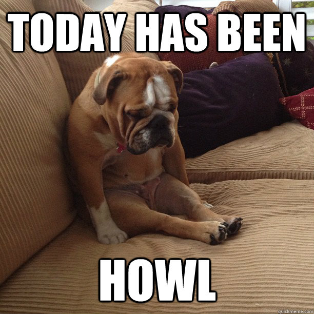 today has been howl - depressed dog