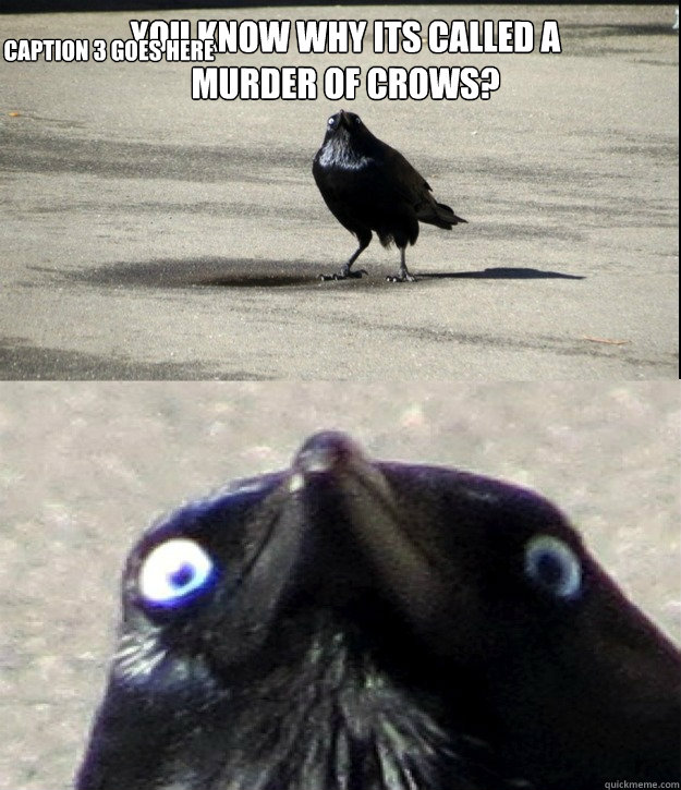 you know why its called a murder of crows caption 3 goes h - 