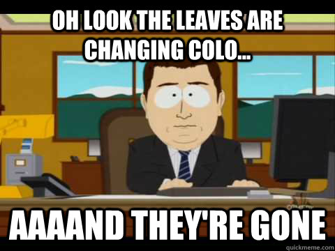 oh look the leaves are changing colo aaaand theyre gone - and its gone