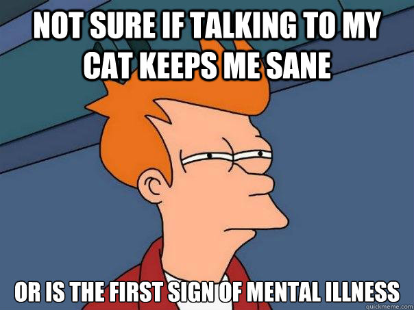 not sure if talking to my cat keeps me sane or is the first  - Futurama Fry