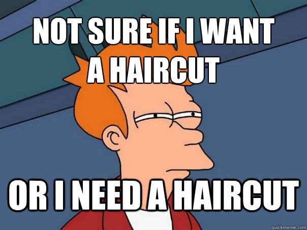 not sure if i want a haircut or i need a haircut - Futurama Fry