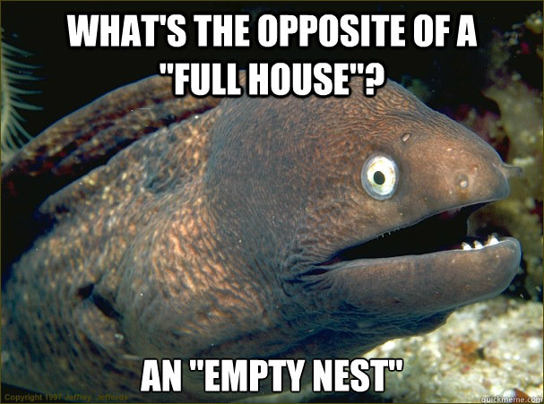 whats the opposite of a full house an em - Bad Joke Eel