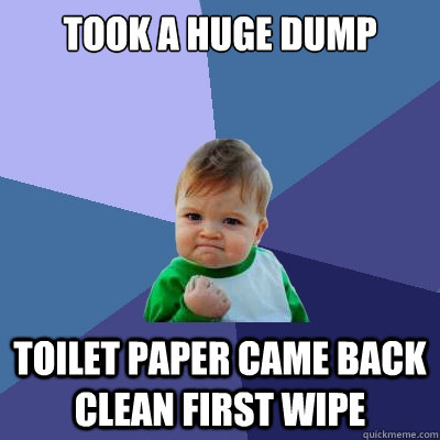 took a huge dump toilet paper came back clean first wipe - Success Kid