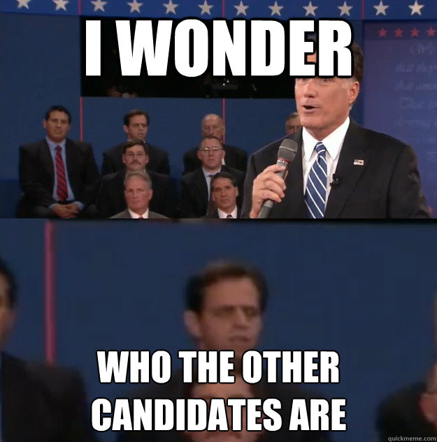i wonder who the other candidates are - Typical Undecided Voter