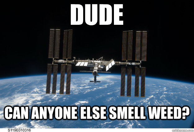 dude can anyone else smell weed - 
