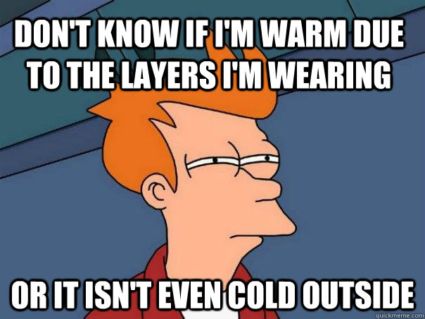 dont know if im warm due to the layers im wearing or it i - Futurama Fry