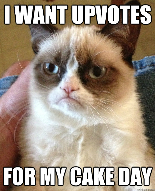 i want upvotes for my cake day - Grumpy Cat