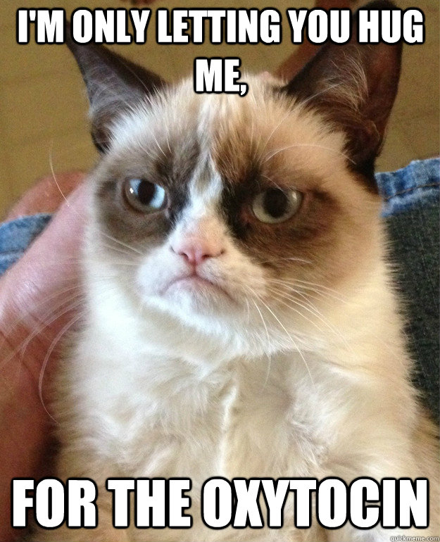 im only letting you hug me for the oxytocin - Grumpy Cat