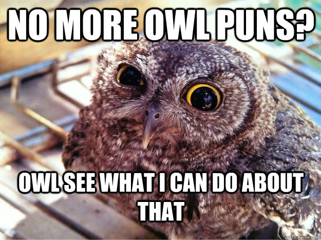 no more owl puns owl see what i can do about that - Skeptical Owl
