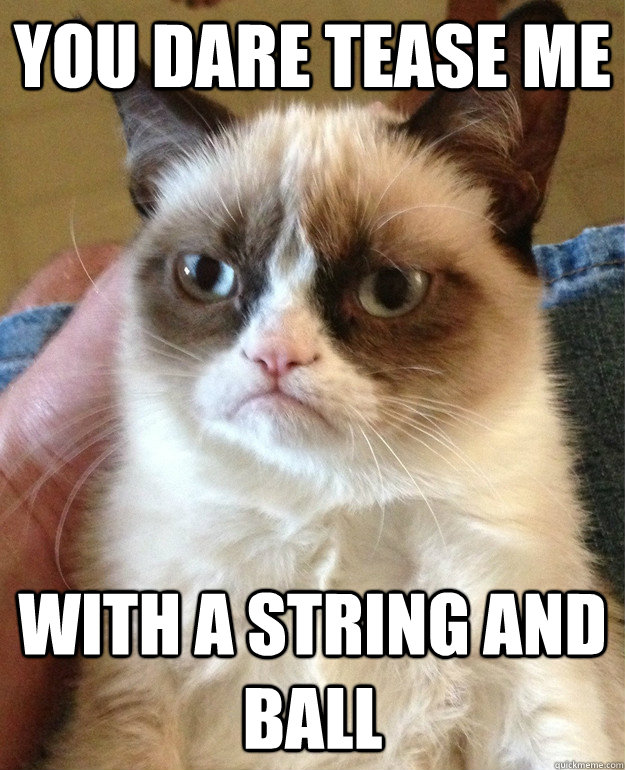 you dare tease me with a string and ball - grumpy cat