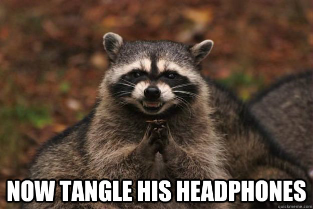 now tangle his headphones - Evil Plotting Raccoon