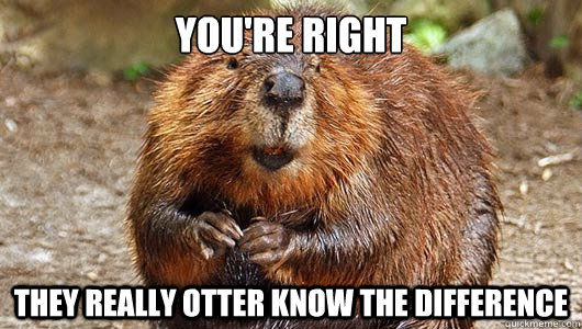 youre right they really otter know the difference -