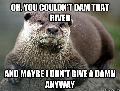 oh you couldnt dam that river and maybe i dont give a dam - 