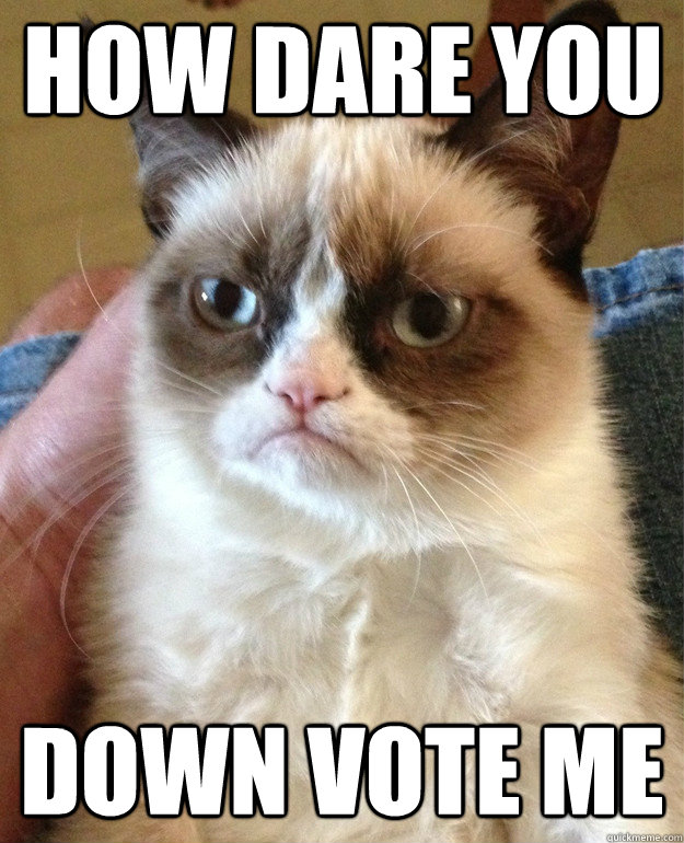 how dare you down vote me - Grumpy Cat