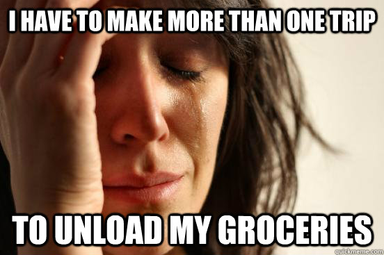 i have to make more than one trip to unload my groceries - First World Problems
