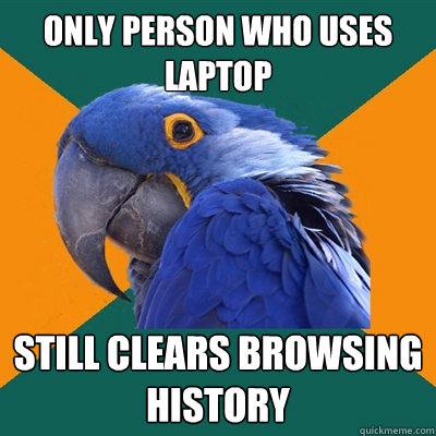 only person who uses laptop still clears browsing history - Paranoid Parrot