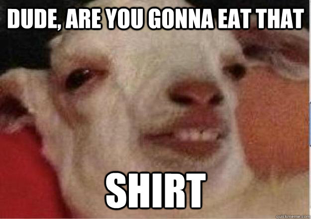 dude are you gonna eat that shirt - 10 goat
