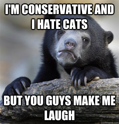 im conservative and i hate cats but you guys make me laugh - Confession Bear