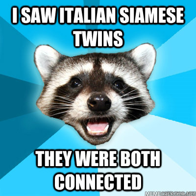 i saw italian siamese twins they were both connected - Lame Pun Raccoon