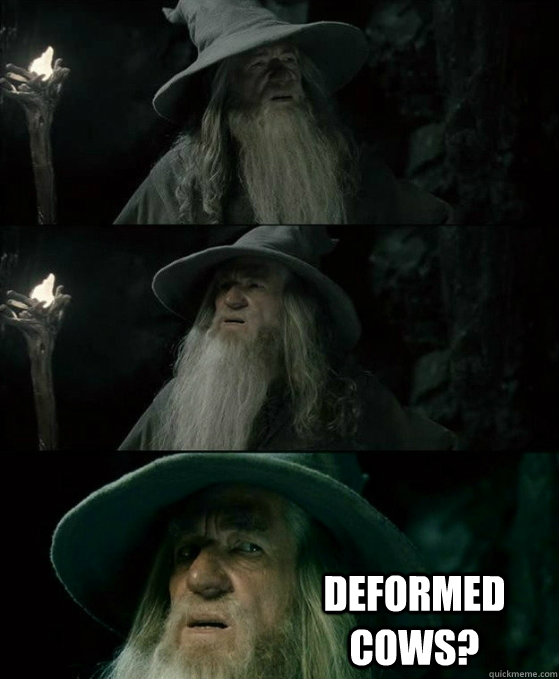 deformed cows - No memory Gandalf