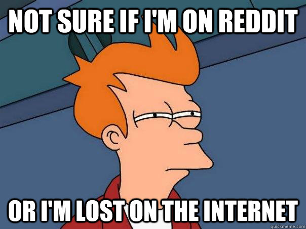 not sure if im on reddit or im lost on the internet - Futurama Fry
