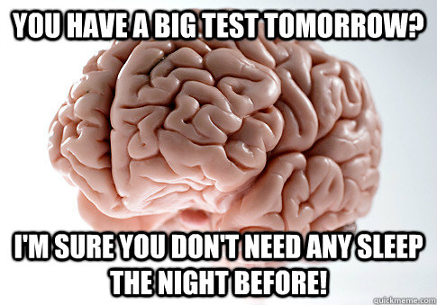 you have a big test tomorrow im sure you dont need any sl - Scumbag Brain