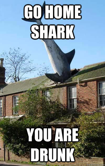 go home shark you are drunk -