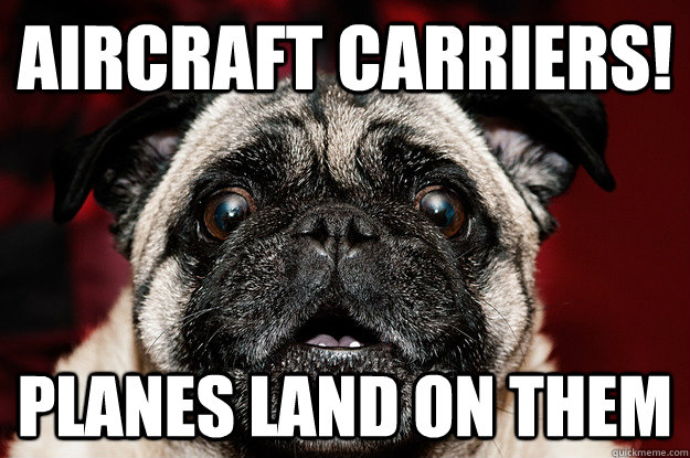 aircraft carriers planes land on them - aircraft pug