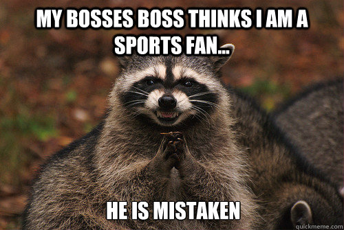 my bosses boss thinks i am a sports fan he is mistaken - Insidious Racoon 2