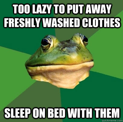 too lazy to put away freshly washed clothes sleep on bed wit - Foul Bachelor Frog