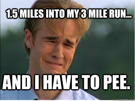 15 miles into my 3 mile run and i have to pee - 1990s Problems