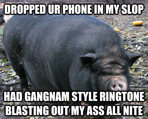 dropped ur phone in my slop had gangnam style ringtone blast - implacable pig