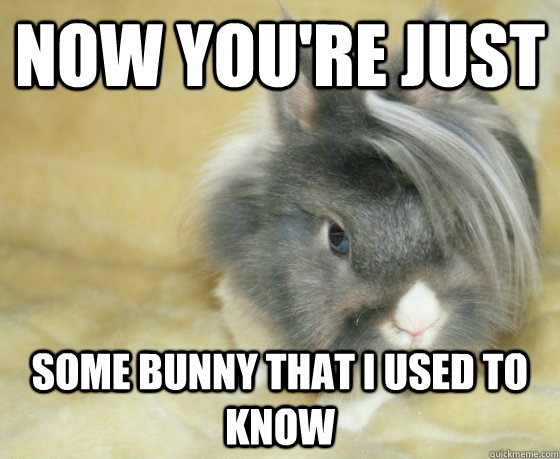 now youre just some bunny that i used to know -