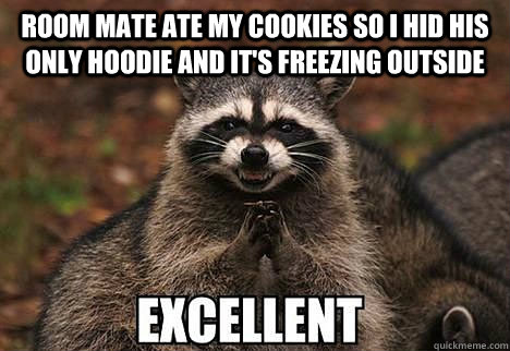 room mate ate my cookies so i hid his only hoodie and its f - evil racoon