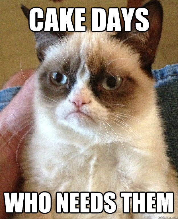 cake days who needs them - grumpy cat