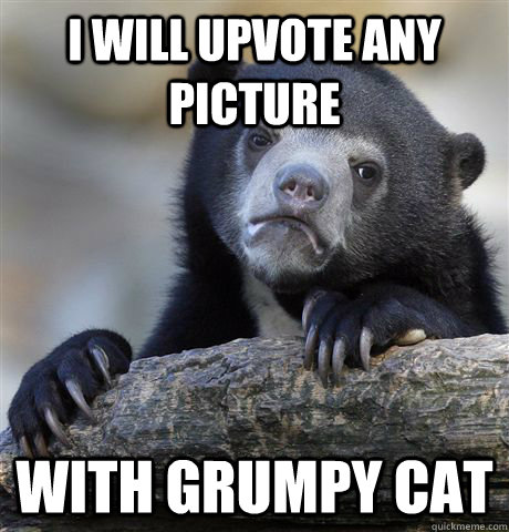 i will upvote any picture with grumpy cat - Confession