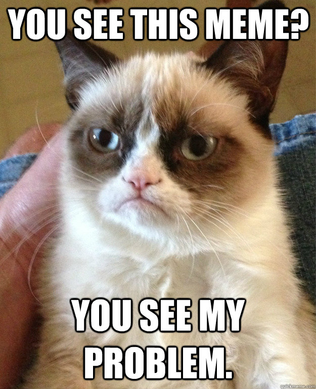 you see this meme you see my problem - Grumpy Cat