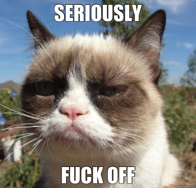 SERIOUSLY FUCK OFF - grumpy cat