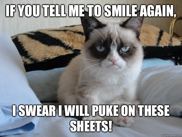 Funny Memes For Kids No Swearing : If you tell me to smile again i swear will puke on