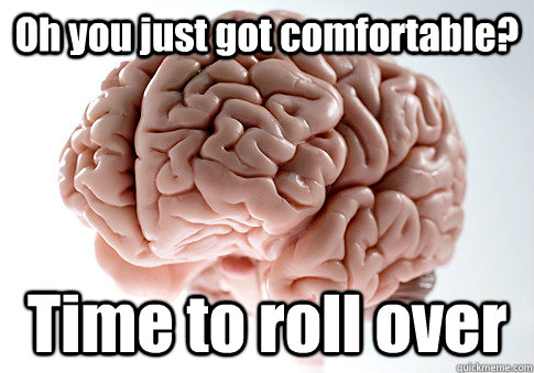 oh you just got comfortable time to roll over  - Scumbag Brain