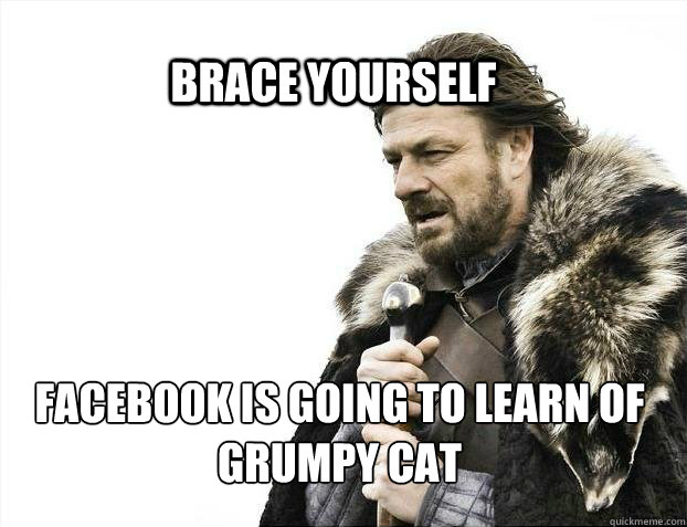 brace yourself facebook is going to learn of grumpy cat - BRACE YOURSELF SOLO QUEUE
