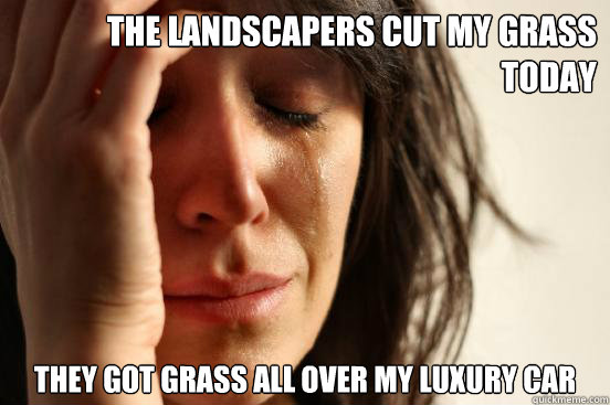 the landscapers cut my grass today they got grass all over m - First World Problems