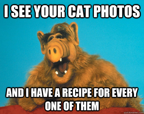 i see your cat photos and i have a recipe for every one of t -