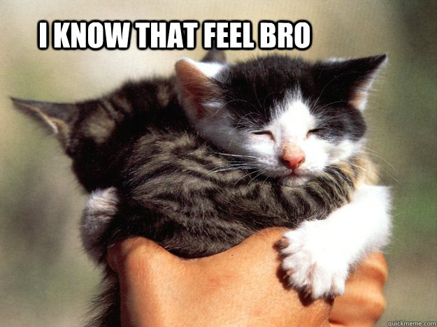 i know that feel bro  -