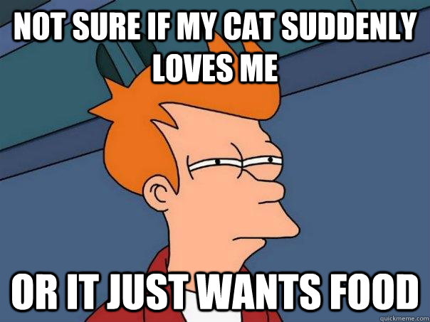 not sure if my cat suddenly loves me or it just wants food - Futurama Fry