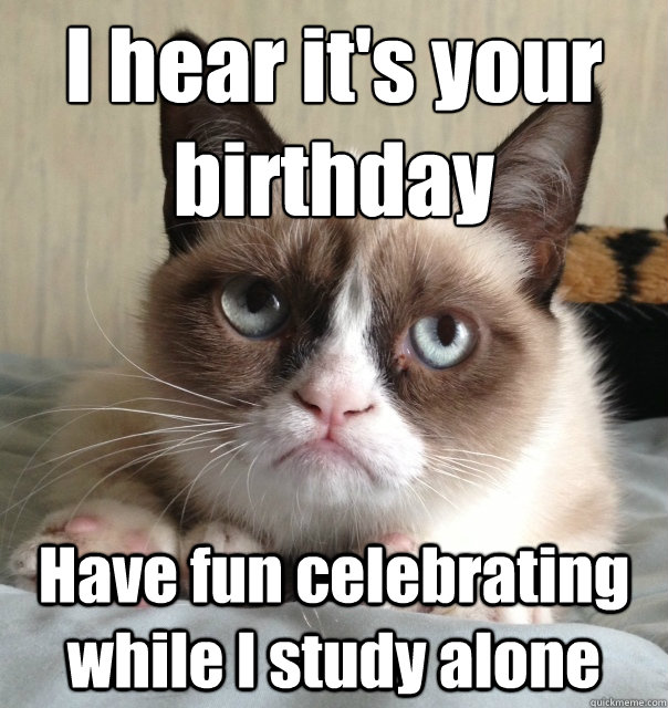 i hear its your birthday have fun celebrating while i study - Grumpy cat