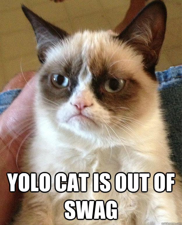 yolo cat is out of swag - Grumpy Cat