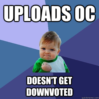 uploads oc doesnt get downvoted - Success Kid